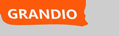 Logo Grandiosoft
